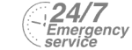 24/7 Emergency Service Pest Control in Greenhithe, DA9. Call Now! 020 8166 9746
